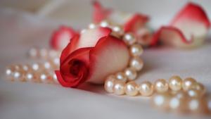 Perlen für den Vibrator